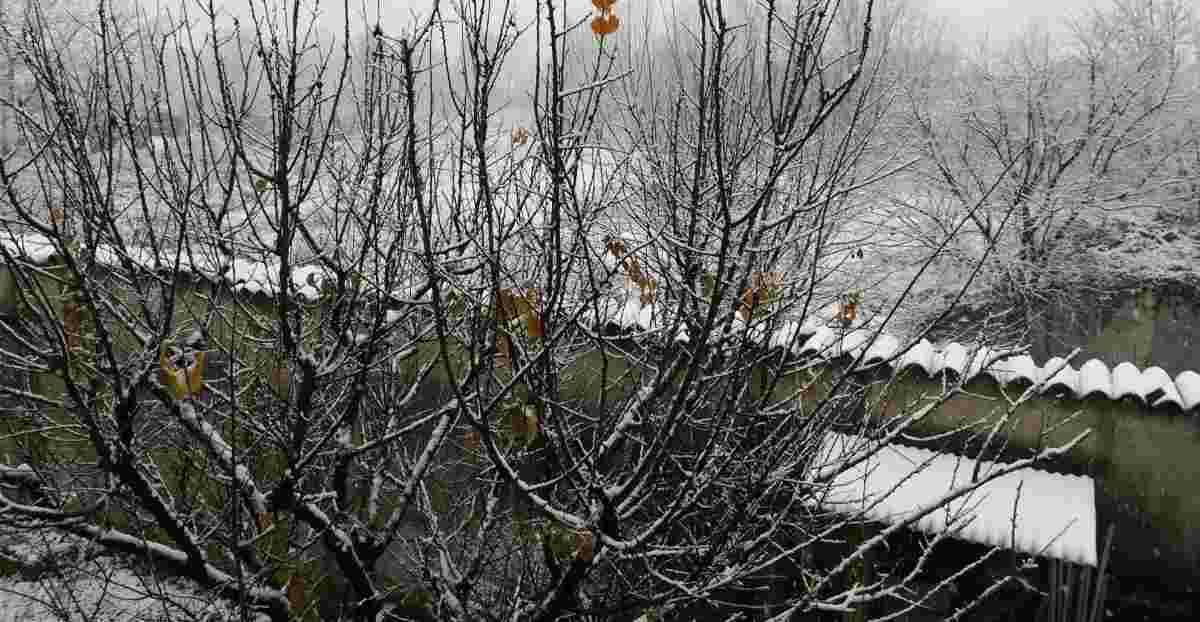 Previsioni Meteo Dicembre 2019: Neve al Nord e domani si replica