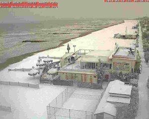 L'intensa ondata di GELO e NEVE del MARZO 2010 sulle spiagge dell'Adriatico