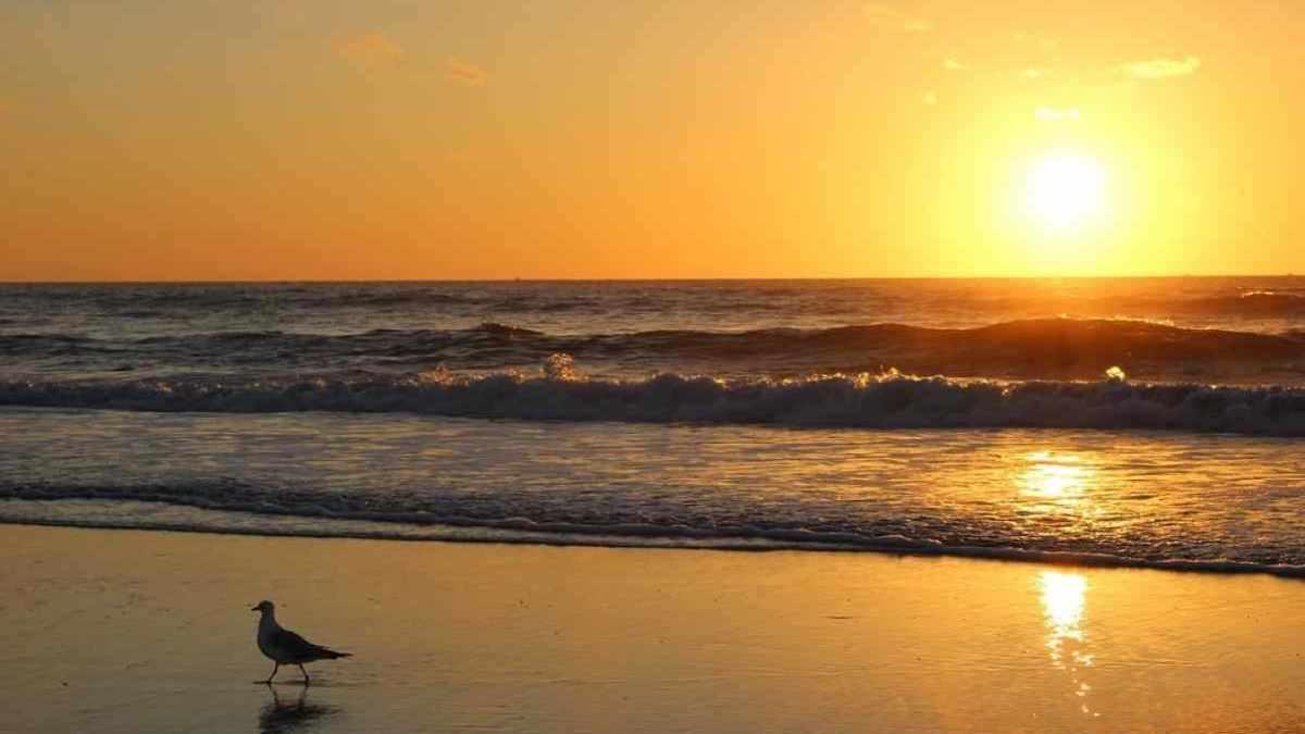 METEO: dal 16 Aprile 2020 arriva l'ANTICICLONE AFRICANO, prima ondata di CALDO della stagione