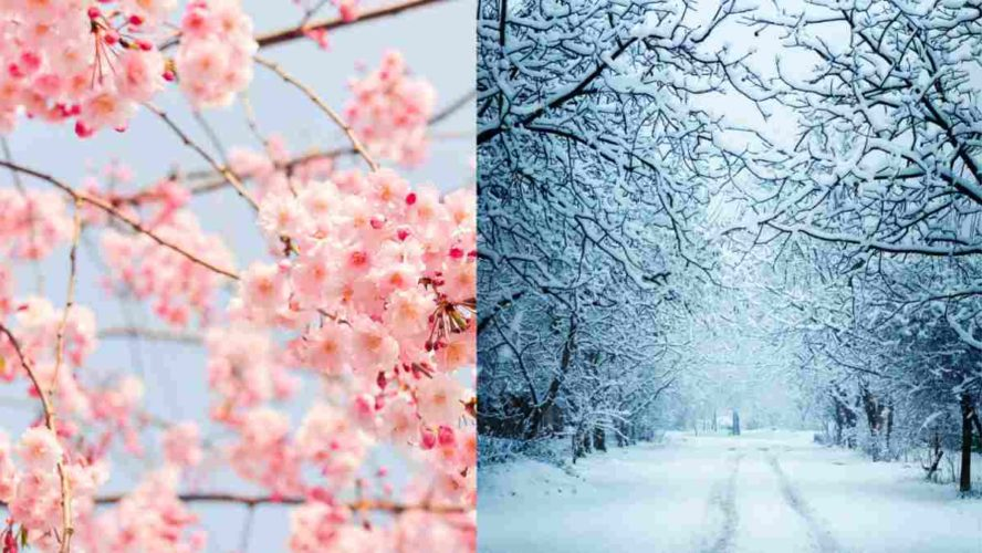 Meteo Tendenza Marzo 2021: Sarà subito Primavera o Inverno Tardivo?