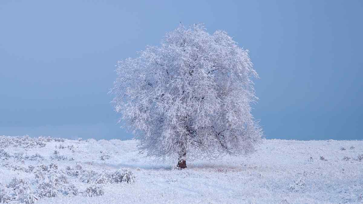 Meteo 18-19 Marzo 2021: Verso l'apice del freddo, dove Nevicherà?