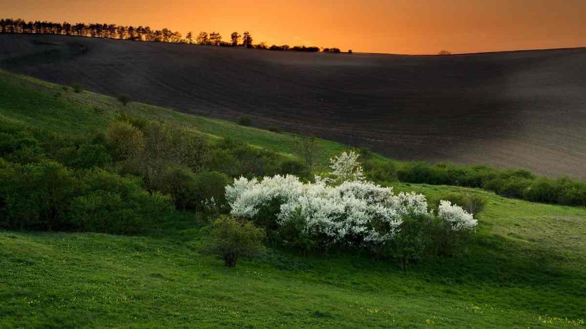 Meteo Terzo Weekend di Aprile: Primavera in pausa; ecco cosa ci aspetta!
